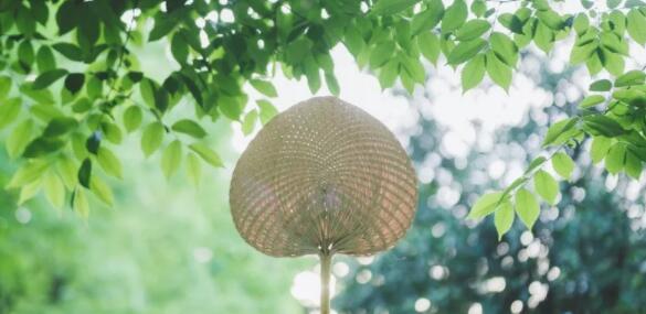 青岛网络推广永诚网络提醒您炎热夏季注意防暑